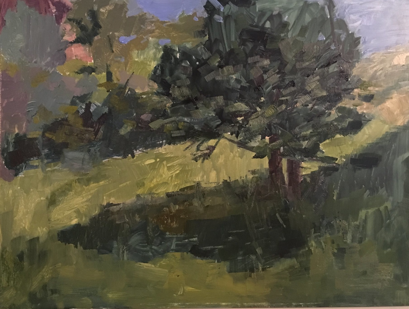 Oil painting Settlers Park, Boulder (Plein air) by Karen Smith