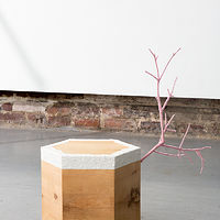 Untitled (Stump Rose) by Magali Hebert-Huot