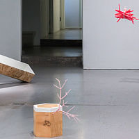 Untitled (Swinging Bundle Pink), Untitled (Stump Rose), Untitled (Boiler Spruce) by Magali Hebert-Huot