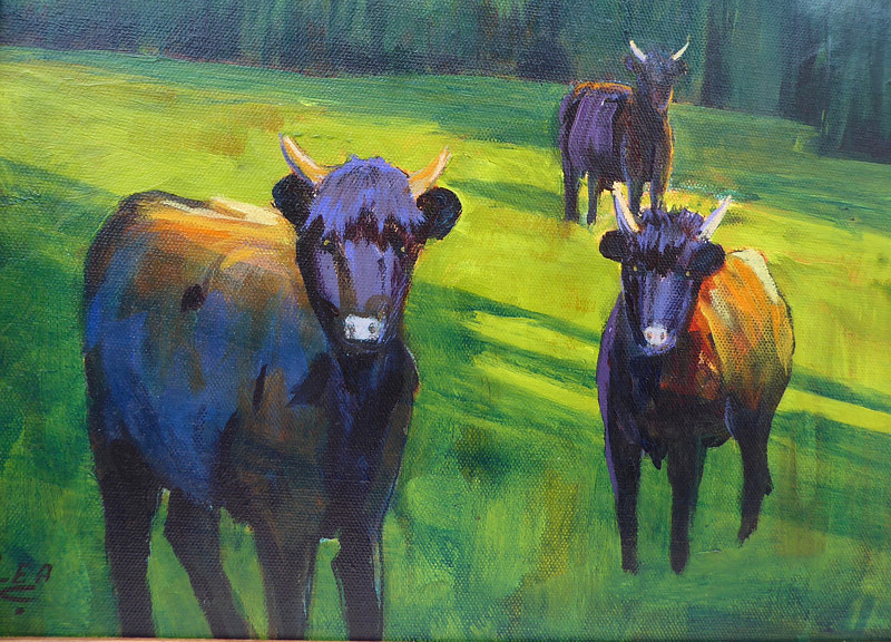 Painting Curious Highland cows 11x14 acrylic by Cecilia Lea