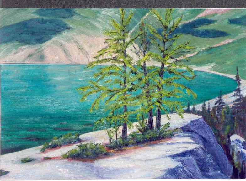 Larches at Upper Skoki Lake 12x16 oils by Cecilia Lea