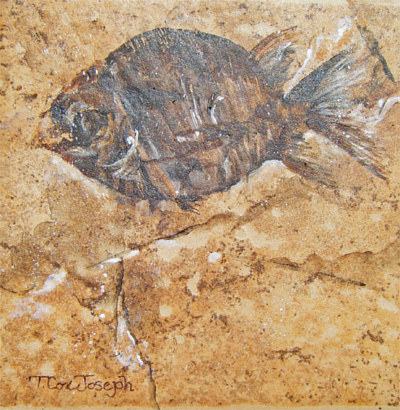 FossilFish2small by Terry Cox-Joseph