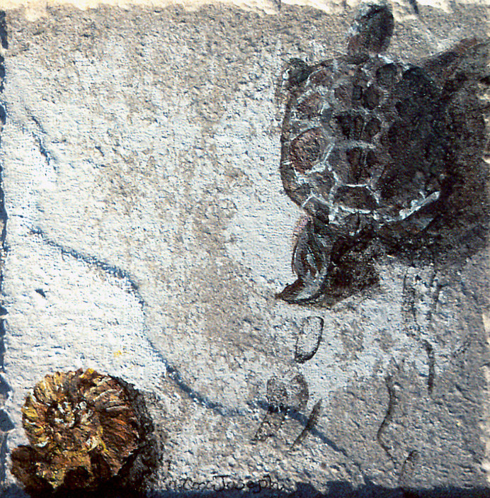 TurtlewithFootprintscolor by Terry Joseph