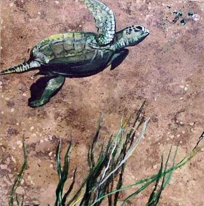 Seaturtleswimmingtorightsmall by Terry Joseph