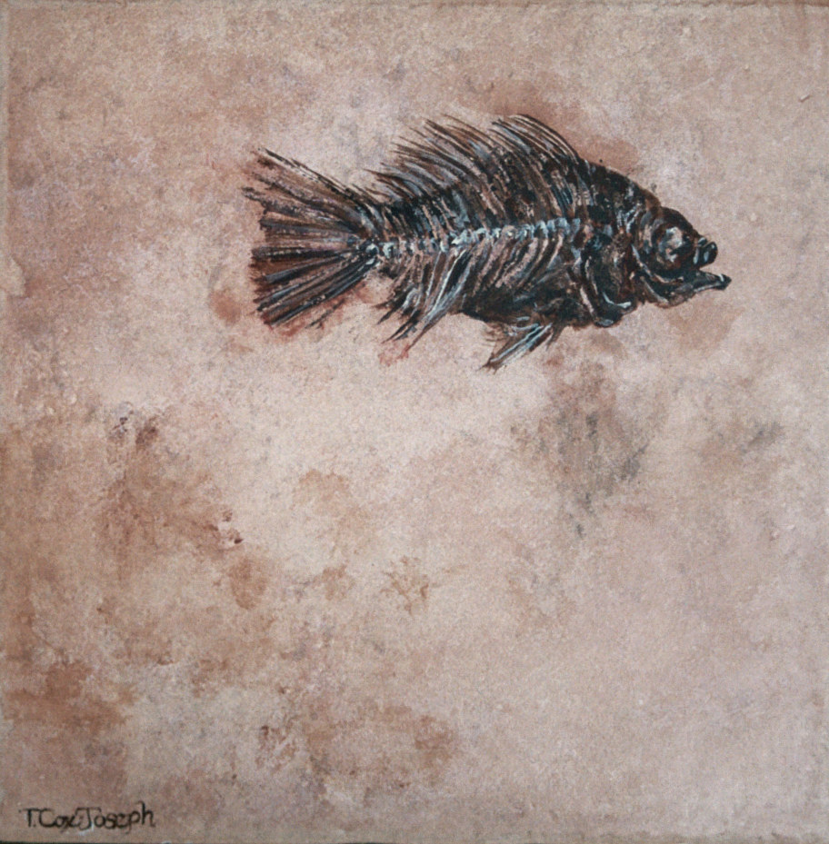 OneFossilFish12inches by Terry Joseph