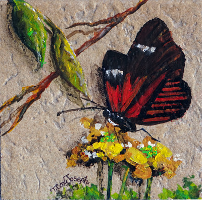RedButterfly2tiny by Terry Joseph
