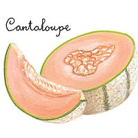 Cantaloupe by Susan Lynch