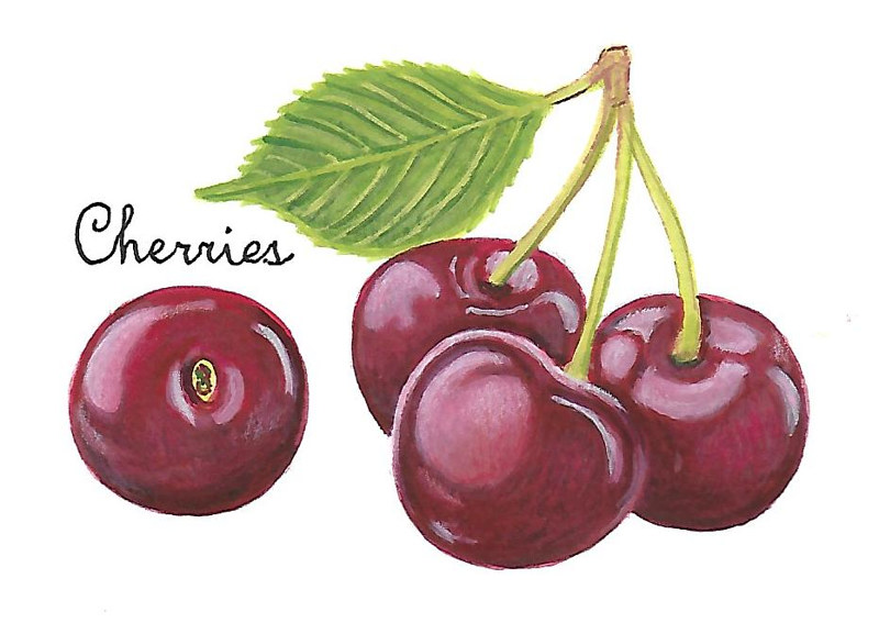 Cherries by Susan Lynch