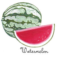 Watermelon by Susan Lynch