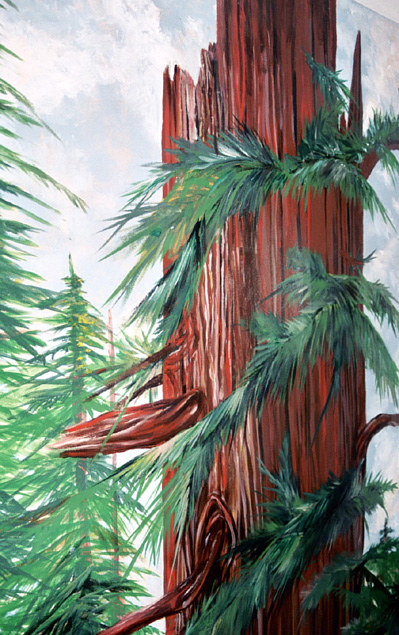 Redwood2copy by Terry Joseph