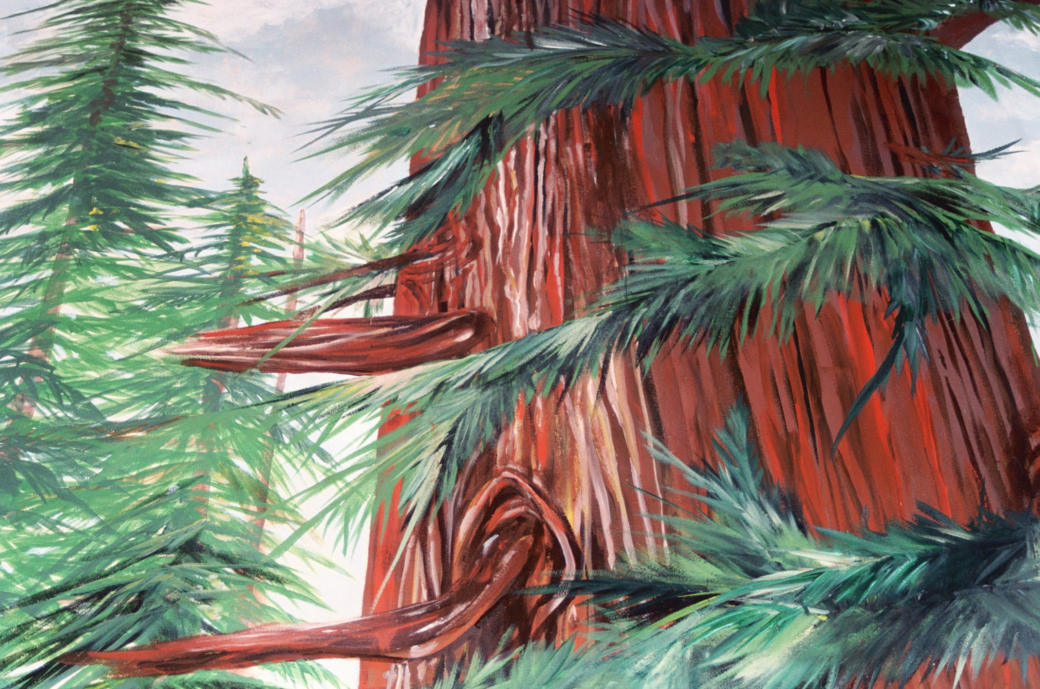 RedwoodCloseup1 by Terry Joseph