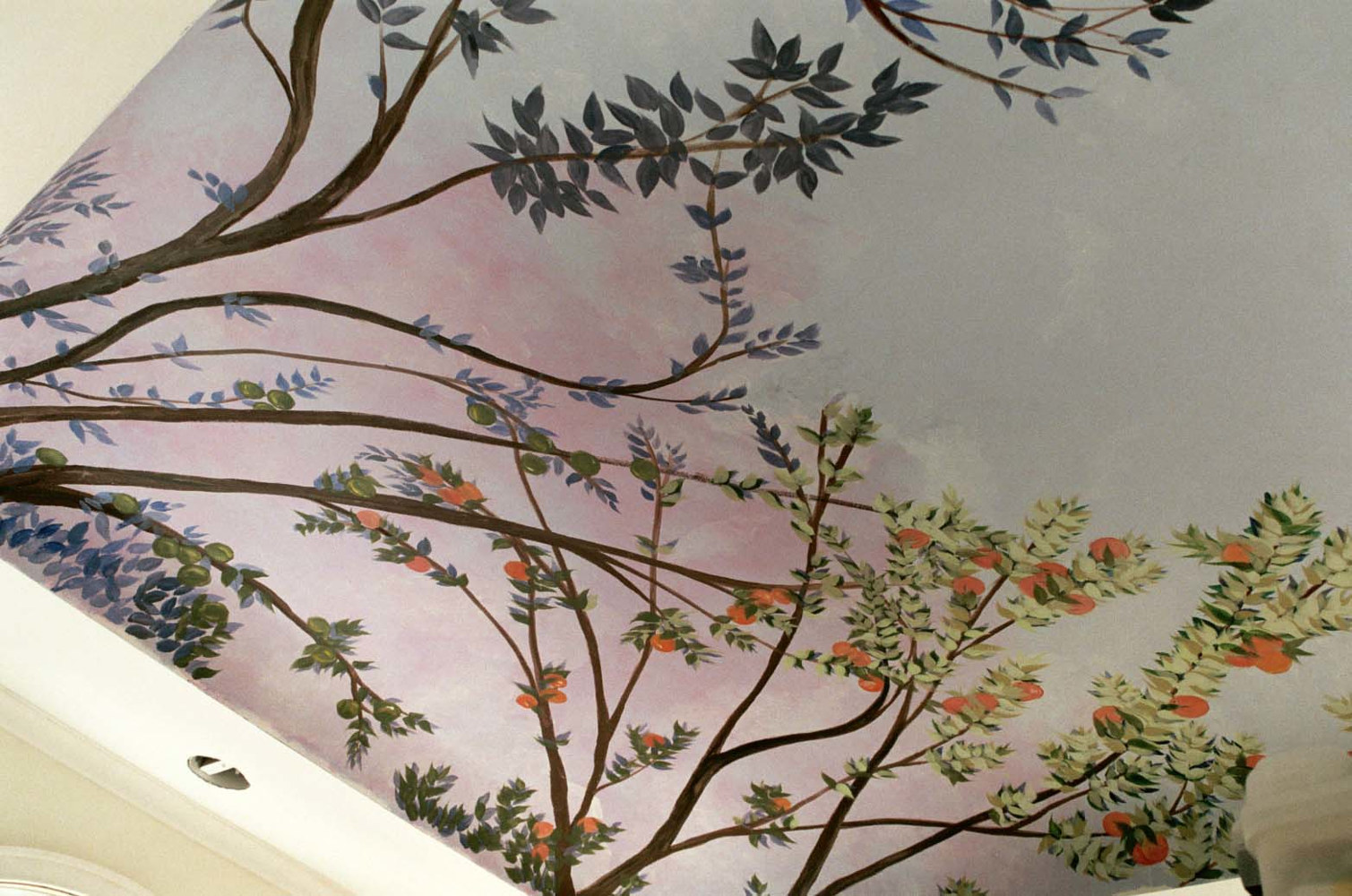 MoniMural Ceiling by Terry Joseph