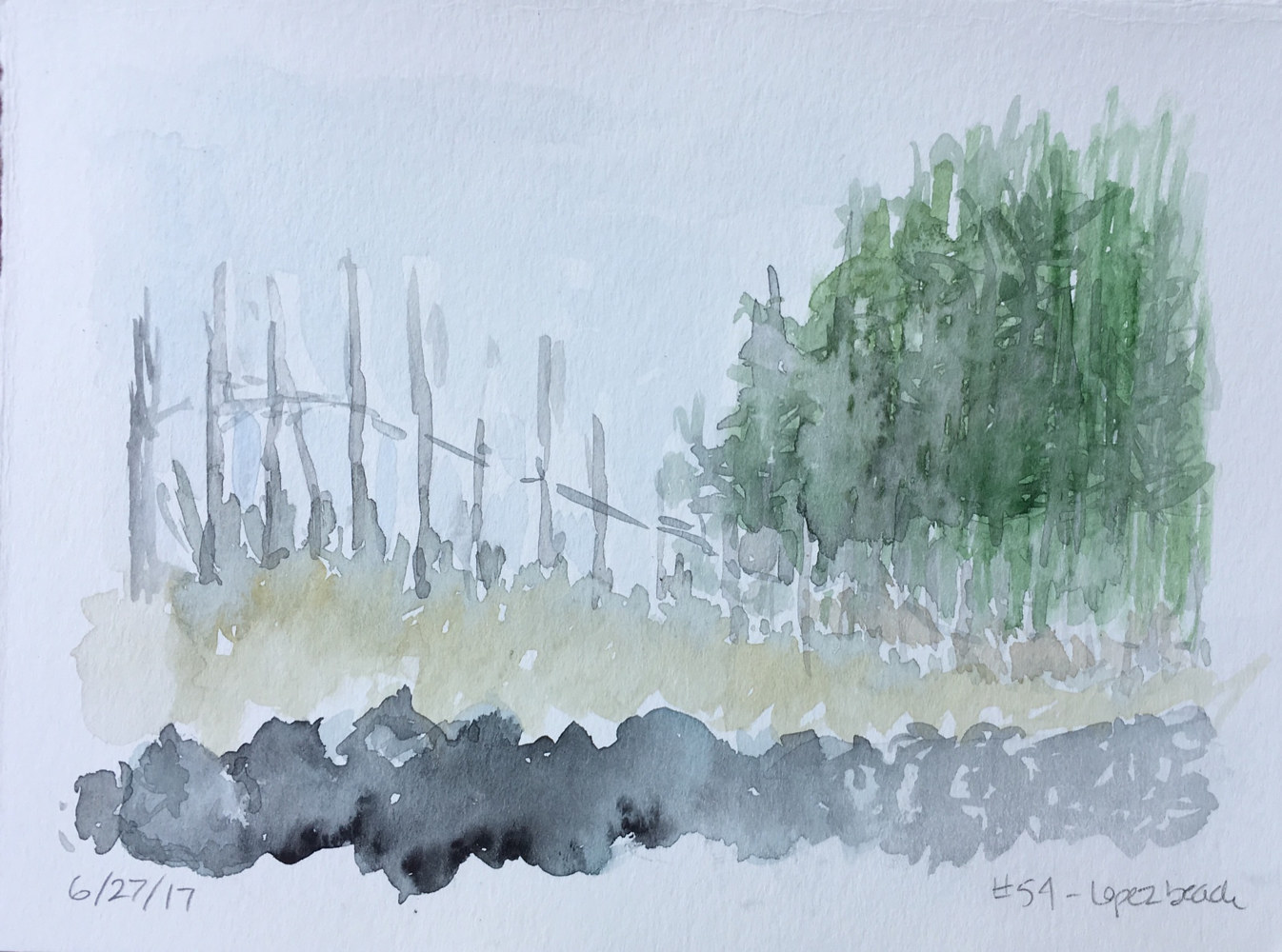 Watercolor Lopez Fence line by Aimee Rudge