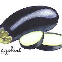 Eggplant by Susan Lynch