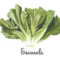 Escarole by Susan Lynch
