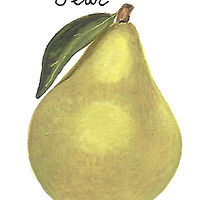 Pear by Susan Lynch