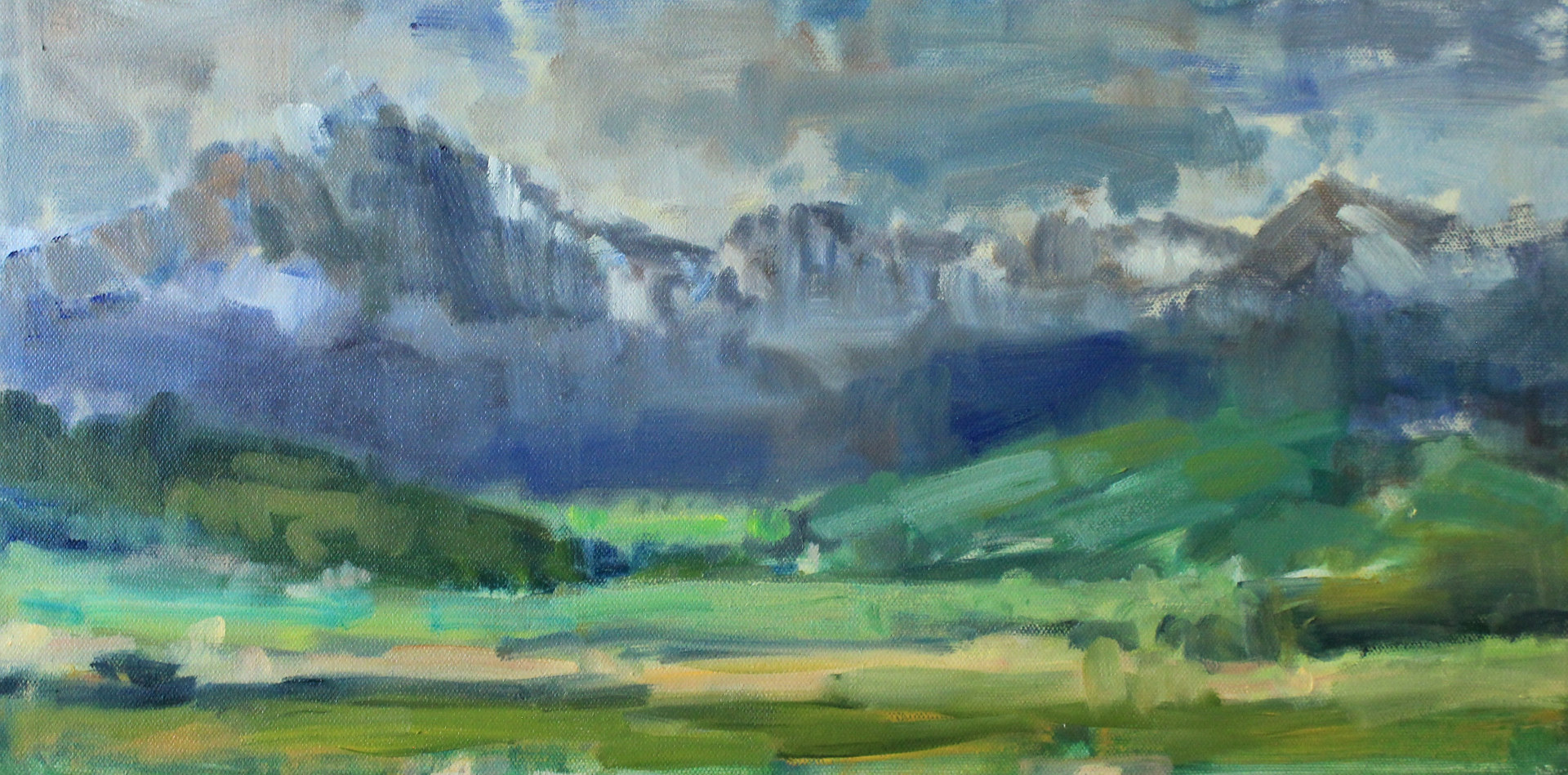 "Blue River, Colorado, oil on canvas, 10""x24"" by Susan Horn"