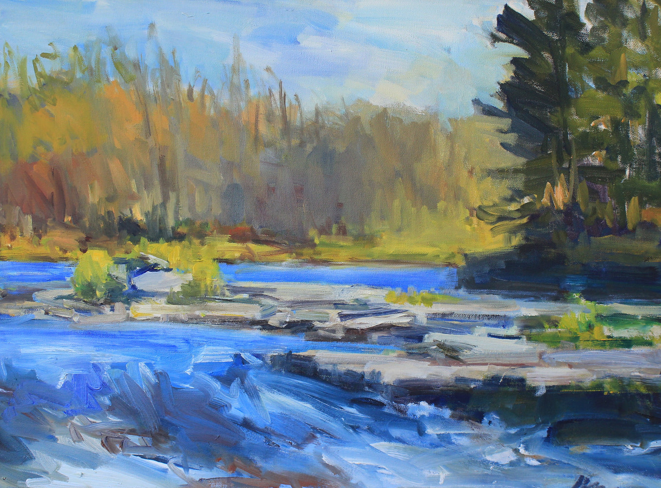 "Rapids, St. Croix River, oil on canvas, 18""x24"" by Susan Horn"