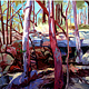 Oil painting Sunny Bush  by Jodi Jansons