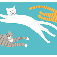 Print Su-purr Sup-purr by Sue Ellen Brown