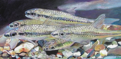 Painting Cape Fear Shiner by Nancy Sharp