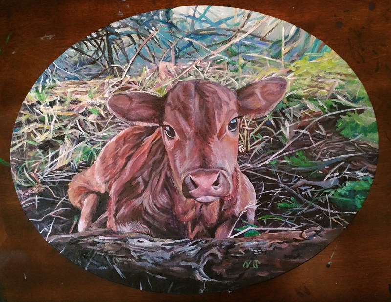 Barney's Calf by Nancy Sharp