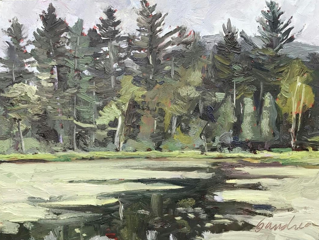 The Quiet Pond- (lake Winifred)  9x12 oil  by Michael  Gaudreau