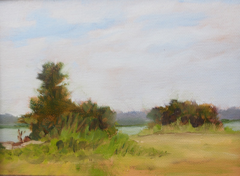 Oil painting Parramore Island Looking West by Michele Barnes