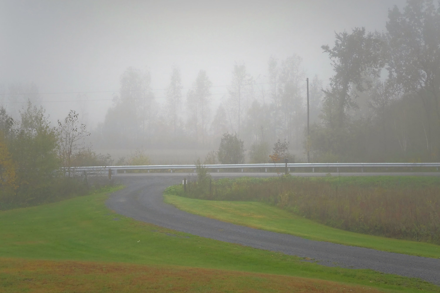 Misty Magladry Road Morning by Marc Brisson