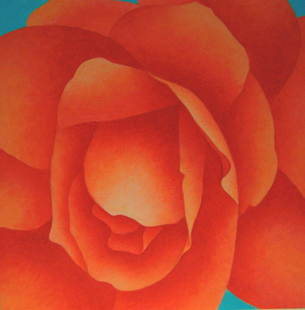 Acrylic painting Begonia  by Anne Popperwell