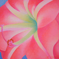 Acrylic painting Amaryllis  by Anne Popperwell