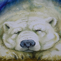 Watercolor Polar Dreaming by Lisa  Baechtle