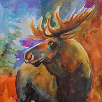 Watercolor Moose by Lisa  Baechtle