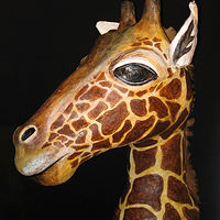 Giraffe Head Dress for Theater 3 by Pamela Schuller