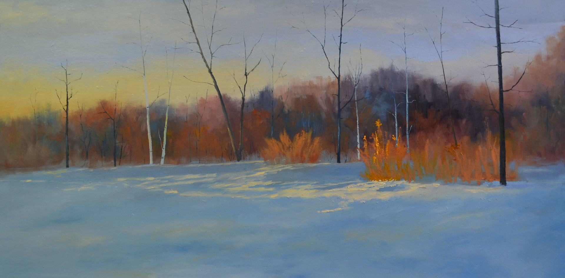 Sun Kissed Orange - 18 x 36, oil on profile cradled wood panel - 14-18  SOLD by Patricia Savoie