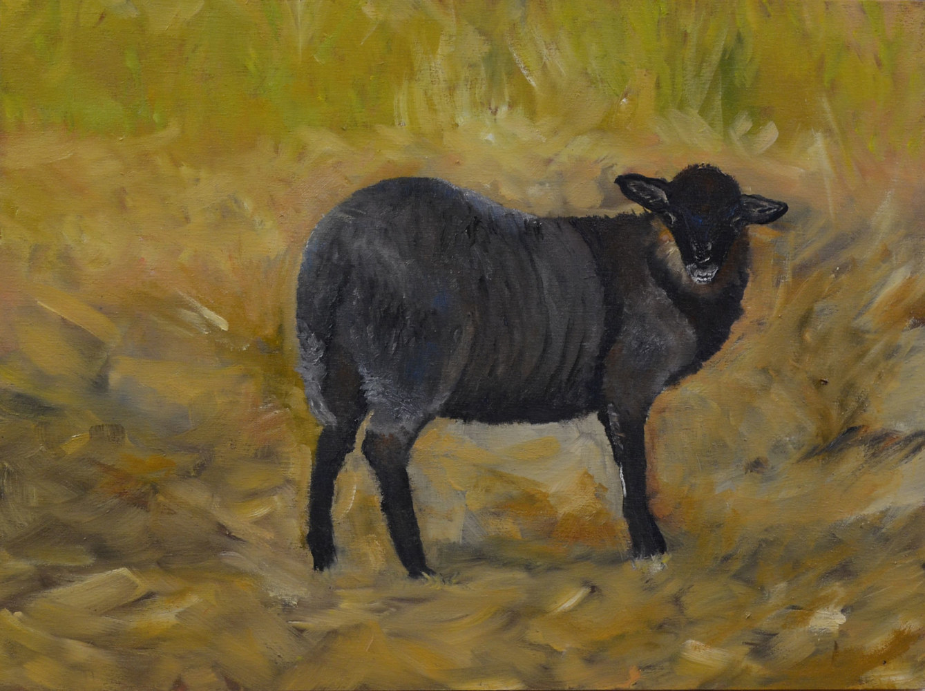 Out in the Field - 12 x 16, oil on profile cradled wood panel - 16-18 by Patricia Savoie