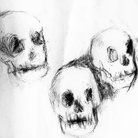 Drawing 2019 study sketch - skulls 4 by Barb Martel