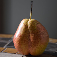 Portrait of a Pear by Susan Raines
