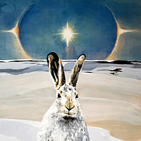 Acrylic painting Winter Rabbit with Sundog by Belinda Harrow