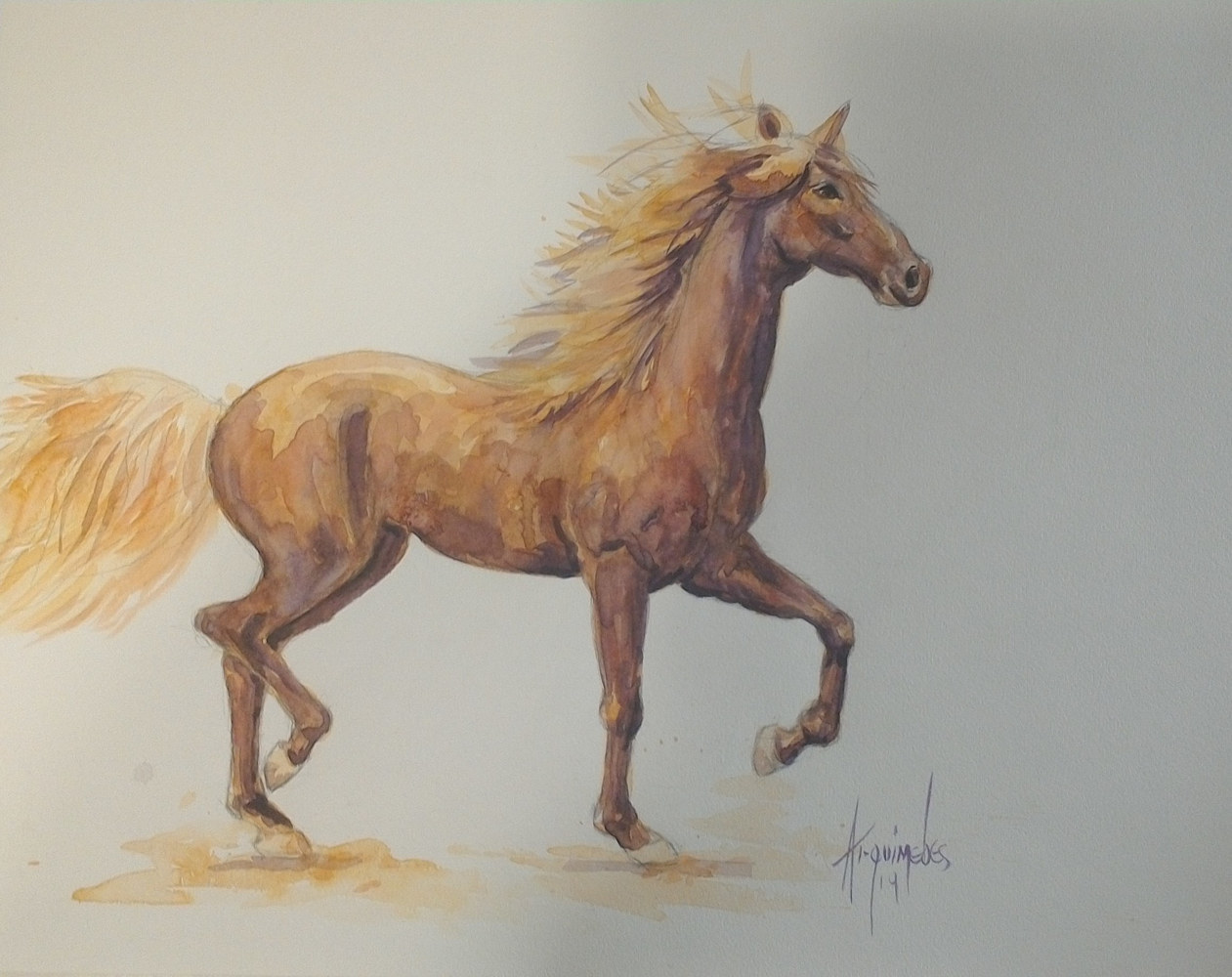 Watercolor horse  by Arquimedes Mejia