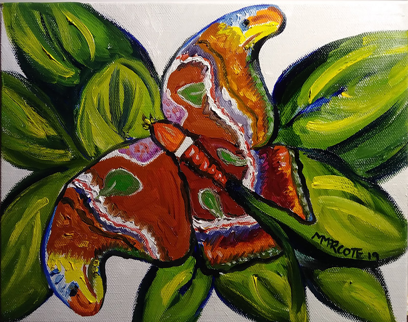 Oil painting Atlas butterfly by Michelle Marcotte