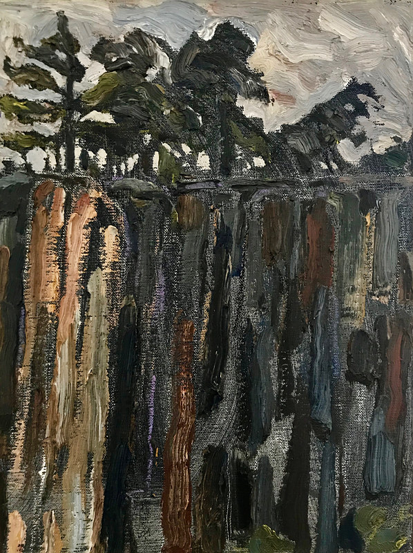 Clifftop Trees, 12 x 9, Oil on linen by Edward Miller