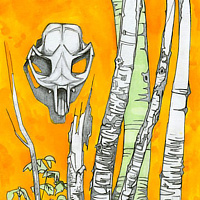 Watercolor Skull and Yellow Birch Study by Claire Cepukas