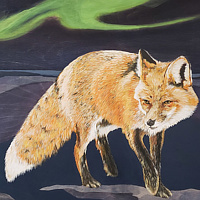 Acrylic painting Night Fox by Belinda Harrow