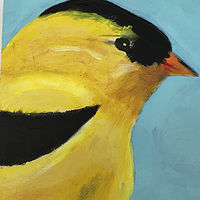 Acrylic painting Vale Perkins Goldfinch #4, 2019 by Edith dora Rey