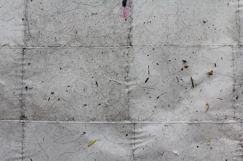 What Lives In The Carpet (You Recognize Violence When You're Leaving One) - detail view I by Sidi Chen