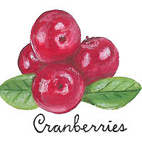 Cranberries by Susan Lynch