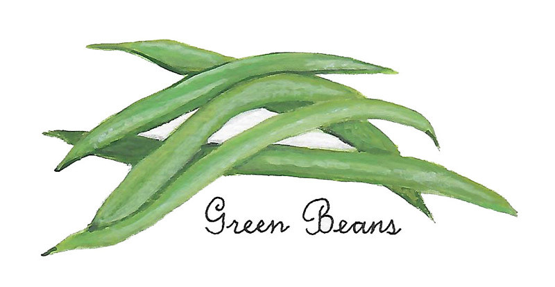 green beans by Susan Lynch