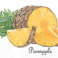 pineapple by Susan Lynch