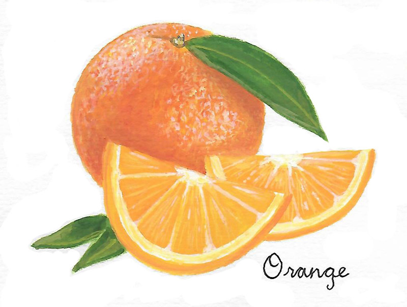 Orange by Susan Lynch